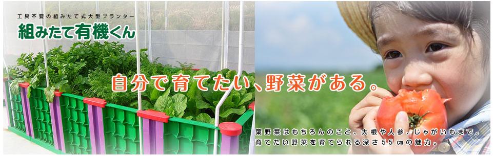 http://www.kumitate-yukikun.com